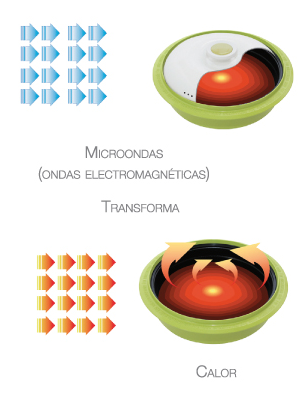 transformacion_microchef